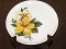 Salem China Yellow Hibiscus Dinner Plates