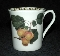 Rosina Queen's Horticultural Society Hooker's Fruit Apricot Mug