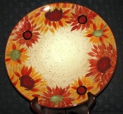 Pfaltzgraff Evening Sun Earthenware Dinner Plates