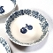 Tienshan Blue Sponge Fruits Cherry Cereal Bowls
