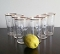 Eames Era Federal Glass Canadian Club Hi Ball Glass Set